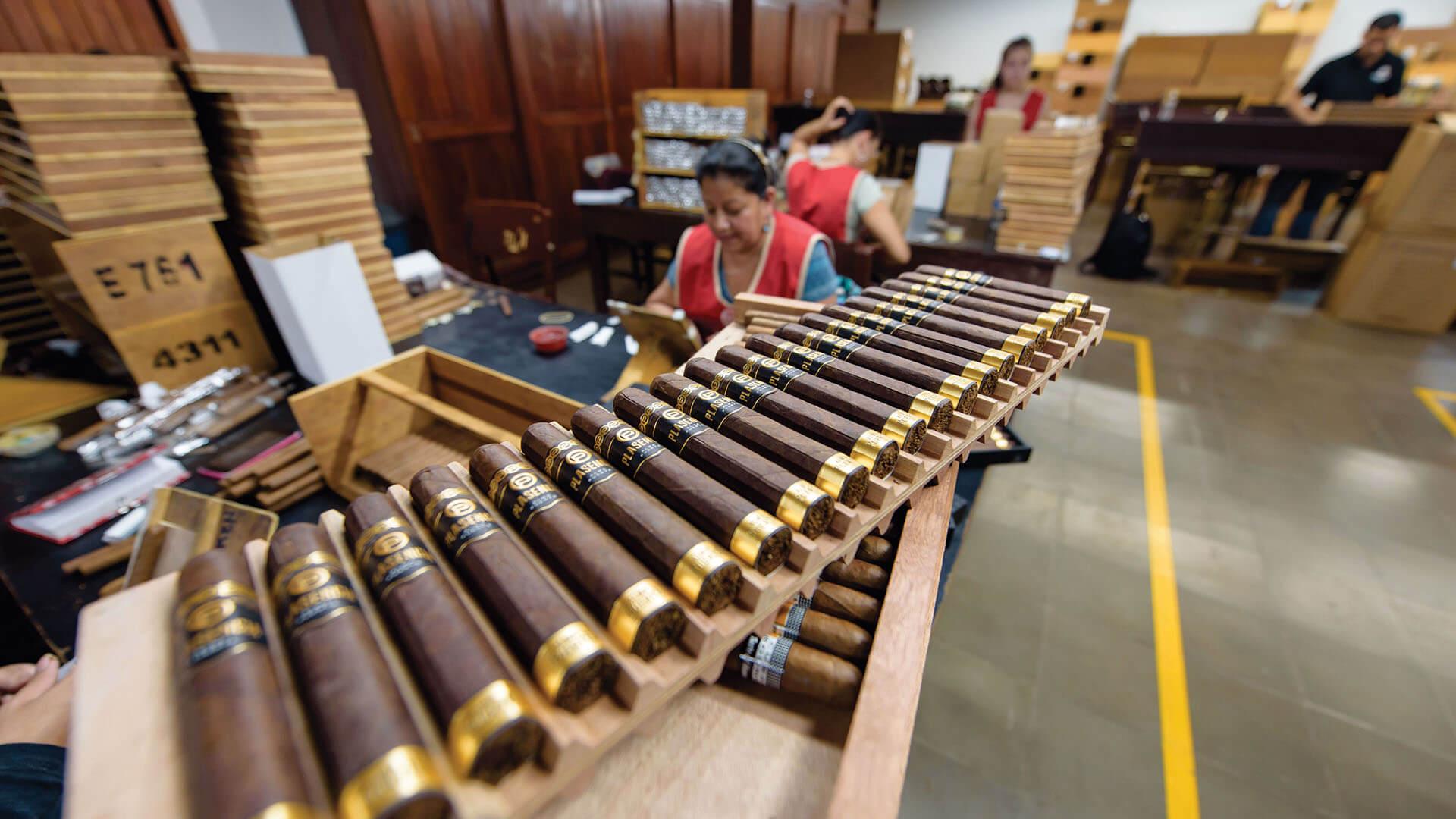 Plasencia Cigars - 2015 photo